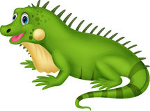 Cute iguana cartoon Royalty Free Stock Images