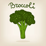 Cute illustration of broccoli Stock Images
