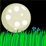Cute illustration of a moon and tall grass. At night, with fireflies Stock Images