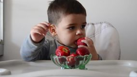 Cute impatient two years old baby boy cant wait to eat strawberries. Eating half of strawberry and than changing to another one stock video footage