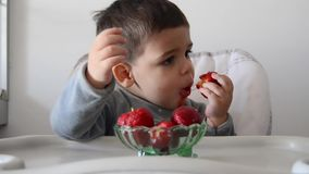Cute impatient two years old baby boy cant wait to eat strawberries. Eating half of strawberry and than changing to another one stock video