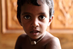Cute Indian little boy Stock Photography