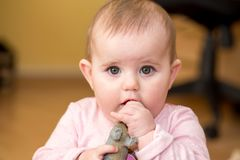 Cute infant baby girl. The first year of the new life Royalty Free Stock Photo