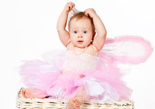 Cute infant baby girl making your hairdo Royalty Free Stock Images