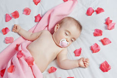 Cute infant sleeps on the background of rose petals. Royalty Free Stock Images