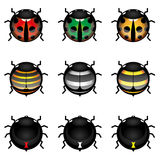 Cute insect collection Stock Photography