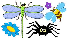 Cute insect collection Stock Images