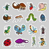 Cute insects and bugs stickers set. Vector funny insects and cute bugs stickers set Stock Photography