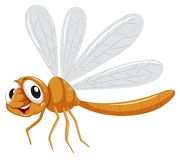 Cute isolated dragon fly. Illustration stock illustration