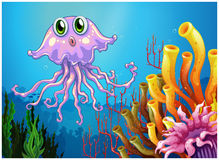 A cute jellyfish near the coral reefs Royalty Free Stock Images