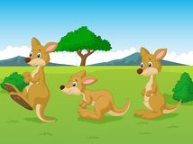 Cute kangaroo cartoon playing in the grassland Stock Photos