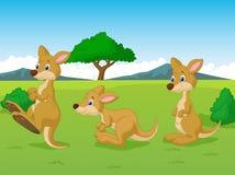 Cute kangaroo cartoon playing in the grassland Stock Photos