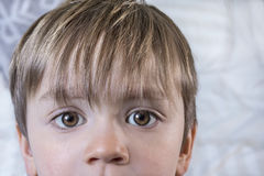 Cute kid with big eyes Stock Photos