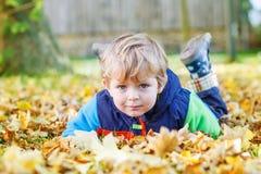 Cute kid boy having fun in autumn park stock photos