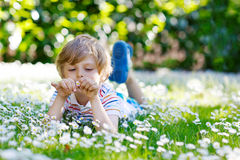 Cute kid boy laying on green grass in summer Royalty Free Stock Photography