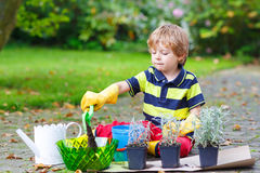 Cute kid boy learning to plant flowers in home's garden. Or farm, on warm sunny day. Outdoors. Environment concept stock photography