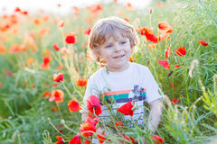 Cute kid boy with poppy flower on poppy field on warm summer day Royalty Free Stock Images