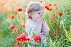 Cute kid boy with poppy flower on poppy field on warm summer day Stock Photo