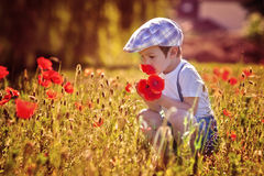Cute kid boy with poppy flower on poppy field on warm summer day Stock Photography