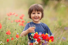 Cute kid boy with poppy flowers and other wild flowers in poppy Stock Photo