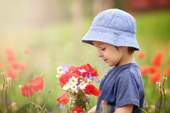 Cute kid boy with poppy flowers and other wild flowers in poppy Royalty Free Stock Images