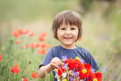 Cute kid boy with poppy flowers and other wild flowers in poppy Royalty Free Stock Image