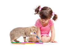 Cute kid and cat kitten playing with pencils Stock Image