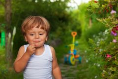 Cute kid chewing berries Stock Images