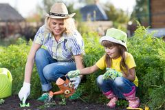 Cute kid girl helps her mother to care for plants. Mother and her daughter engaged in gardening in the backyard. Spring stock photography