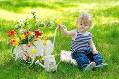 Cute kid on the grass near wheelbarrow with flowers Royalty Free Stock Image