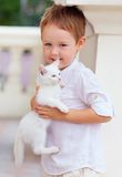 Cute kid holding white kitten Royalty Free Stock Photography