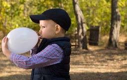Cute Kid Inflating White Balloon Seriously Royalty Free Stock Image