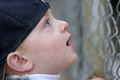 Cute kid looking up in awe Stock Photography