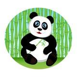 Cute kid panda eating bamboo Stock Photo