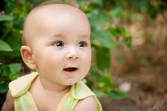 Cute kid Royalty Free Stock Image