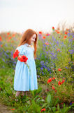 Cute kid redhead posing near blooming poppy field with red wild Stock Photography