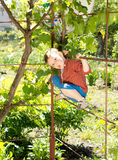 A cute kid sitting on the boundary Stock Images