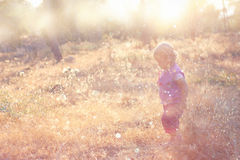 Cute kid walking in field and warm sunset light Stock Image