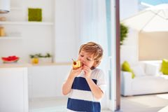 Cute kid, young boy eating tasty cupcake with whipped cream and fruits at home. Kitchen royalty free stock photography