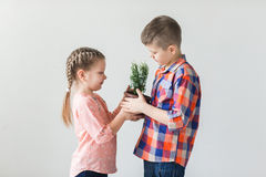 Cute kids boy and girl holding young plant in a pot Royalty Free Stock Photo