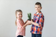 Cute kids boy and girl holding young plant in a pot.  Royalty Free Stock Photo