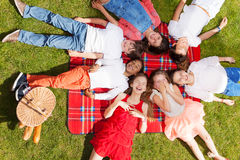 Cute kids laying in a circle on the picnic blanket. Top view portrait of seven laughing kids laying in a circle on the picnic blanket next to the hand basket in Stock Images