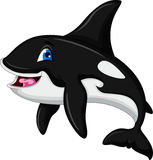 Cute killer whale cartoon. Illustration of Cute killer whale cartoon Royalty Free Stock Image