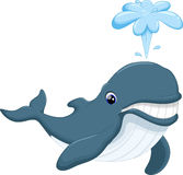 Cute killer whale cartoon Royalty Free Stock Images