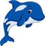 Cute killer whale cartoon Stock Photography