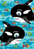 Cute Killer Whale and Tropical Fish Royalty Free Stock Images