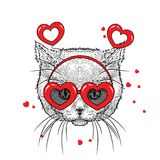 Cute kitten in accessories with hearts. Vector illustration for a postcard or a poster, print for clothes. Valentine`s Day. Stock Image