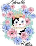 Cute kitten adorable Royalty Free Stock Images