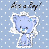 Cute kitten boy. Greeting card Cute kitten boy on a blue background Royalty Free Stock Photos