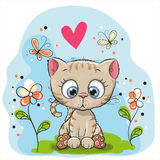 Cute Kitten with flowers. And butterflies on the meadow